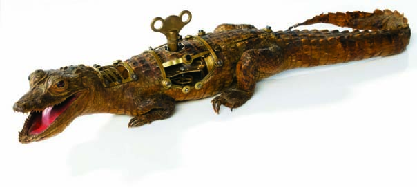 Fixed - Baby Crocodile_905